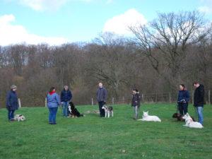 Hundetraining Kreis Segeberg - Karen Frick - Workshops - Abbruchsignal auftrainieren